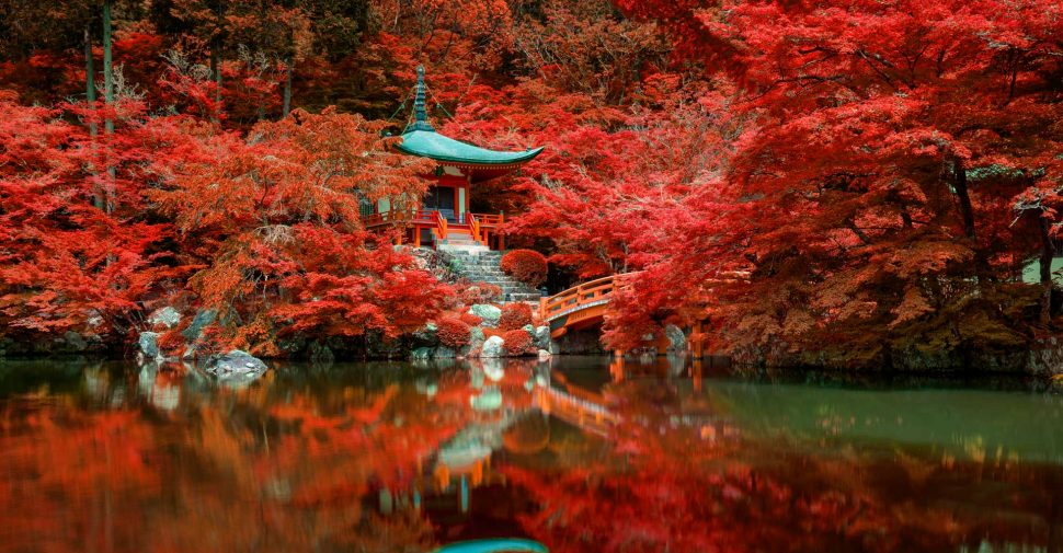 autumn-foliage-at-daigo-ji-temple-kyoto-japan-DNMX6GE
