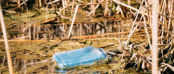 Old Plastic Canister Floats In Water Of Swamp Or Pond. Used Empty Packing Materials Left In Water. Eco Concept Garbage Disaster From Ecological Pollution Of Environment. Waste Pollution Problem.